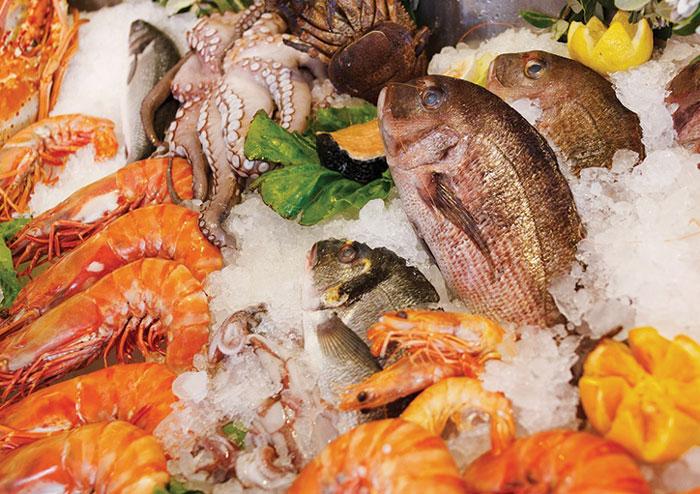 Fangfrischer-Fisch